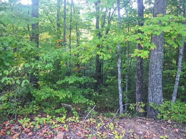 Lot# 11 Pinemont Drive, Pigeon Forge, TN 37863 (#1018196) :: Shannon Foster Boline Group