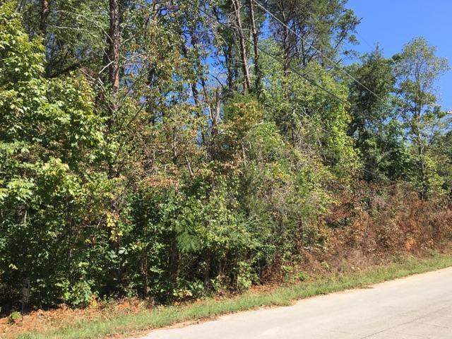 Wilderness Rd, Friendsville, TN 37737 (#1018295) :: Billy Houston Group