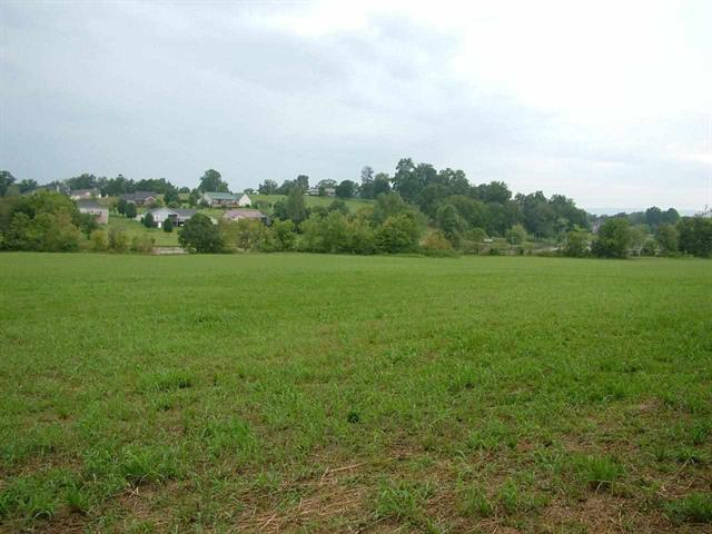 Lot 5 New Union Rd, Dayton, TN 37321 (#1018532) :: Billy Houston Group