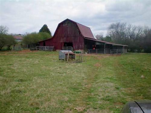 000 Hwy 11, Athens, TN 37303 (#1018928) :: Billy Houston Group