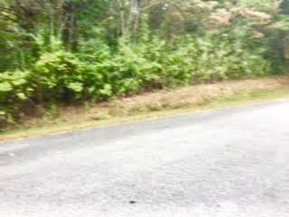 120 Kawga Way, Loudon, TN 37774 (#1019618) :: Shannon Foster Boline Group