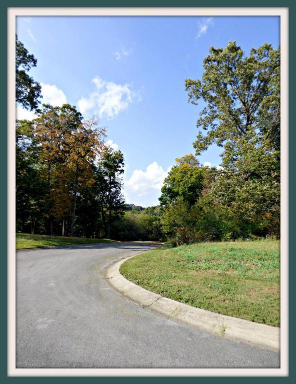 Lot 7 Hilltop View Drive, Dandridge, TN 37725 (#1019800) :: SMOKY's Real Estate LLC