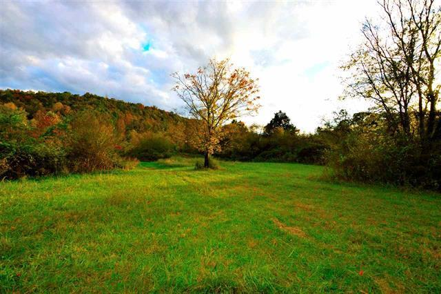 5407 Toestring Valley Rd, Spring City, TN 37381 (#1021156) :: Billy Houston Group
