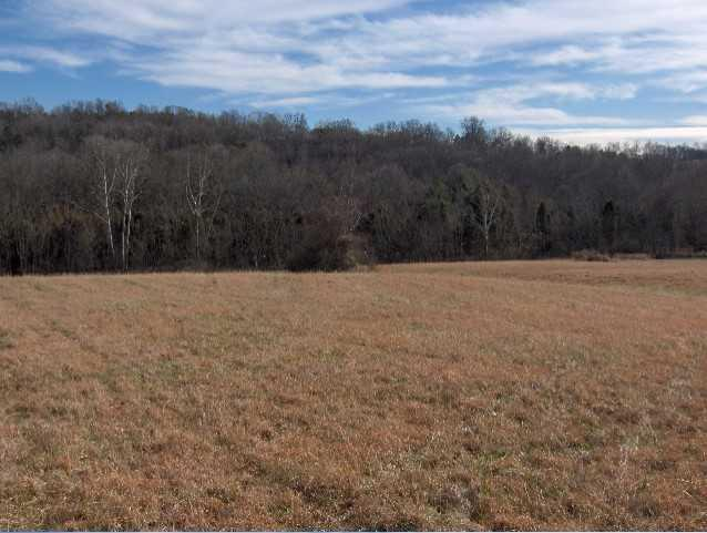 Lot 36 Creswell Rd, Seymour, TN 37865 (#1022071) :: Billy Houston Group