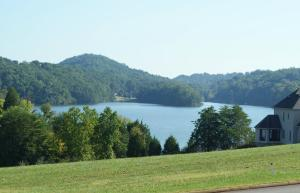 Lot 1028 Whippoorwill Drive, Vonore, TN 37885 (#1022302) :: Billy Houston Group