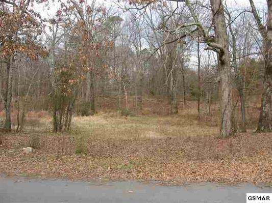 Lot 14 Flatwood Road, Sevierville, TN 37876 (#1023065) :: The Terrell Team