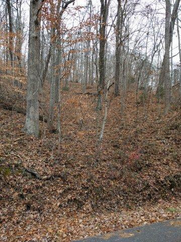 3.82 Acres Powder House Rd, Powell, TN 37849 (#1024774) :: Billy Houston Group