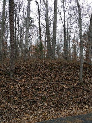 2.46 Acres Powder House Rd, Powell, TN 37849 (#1024777) :: Billy Houston Group
