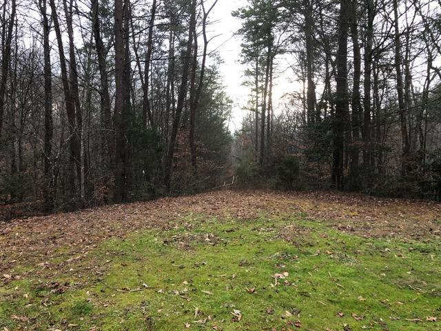 Tract 4 Hidden Cove Way, Sevierville, TN 37876 (#1025609) :: Billy Houston Group
