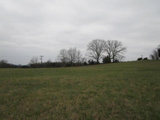 Lot 8 Richland Rd, Blaine, TN 37709 (#1026109) :: Billy Houston Group