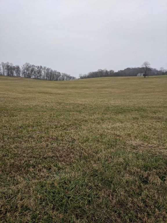 1920 River Mist Circle, New Market, TN 37820 (#1026251) :: Shannon Foster Boline Group