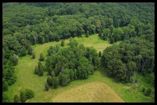Long Farm Way, Knoxville, TN 37932 (#1026415) :: Coldwell Banker Wallace & Wallace, Realtors