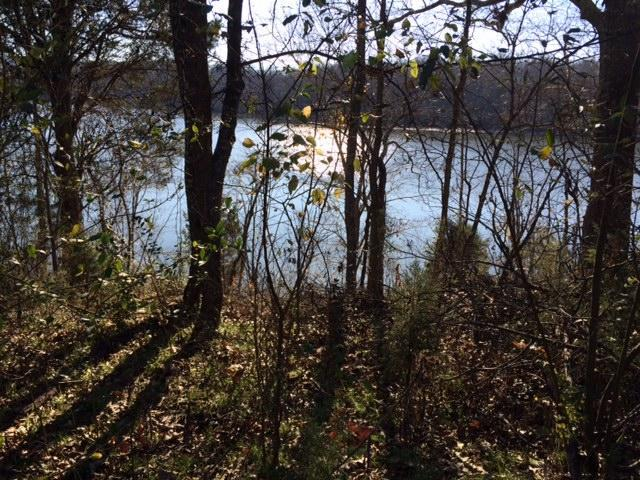 642 Emory River Rd, Harriman, TN 37748 (#1029823) :: Billy Houston Group