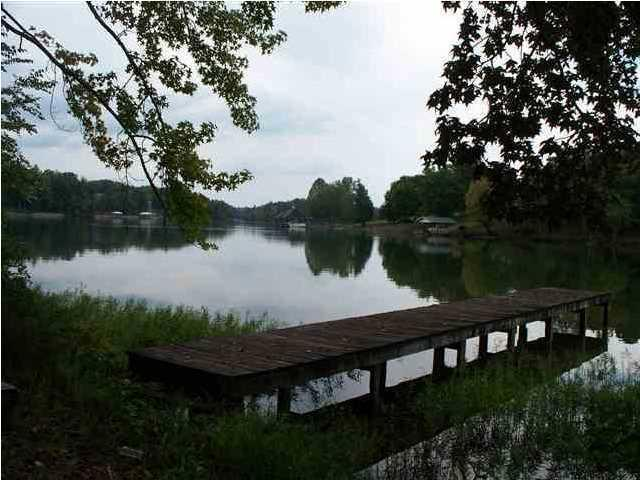 Toestring Cove Rd Rd, Spring City, TN 37381 (#1031260) :: Billy Houston Group