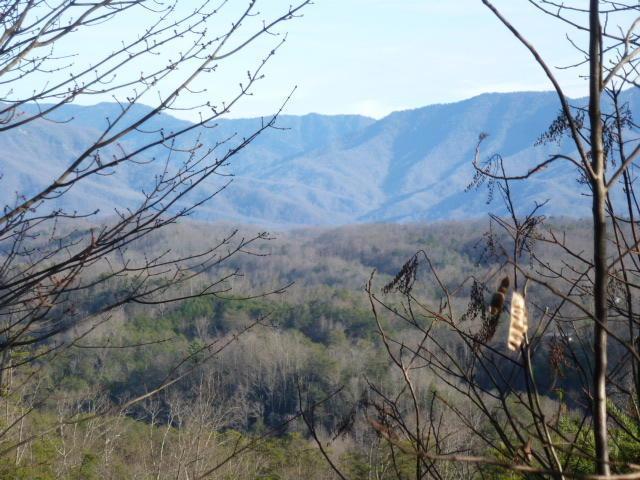 Lt. 7 Mountain Boulevard, Sevierville, TN 37876 (#1031334) :: Billy Houston Group