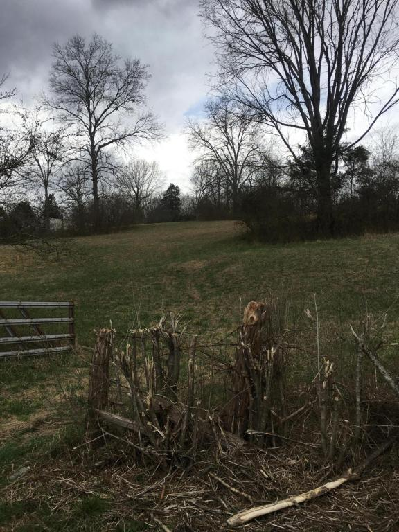 9926 Andersonville Pike, Powell, TN 37849 (#1031686) :: Realty Executives Associates