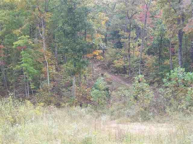 275 Woody Hill Road, Kingston, TN 37763 (#1032846) :: Venture Real Estate Services, Inc.