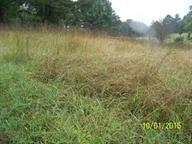 Lot 12 Cold Creek Rd, Madisonville, TN 37354 (#1033149) :: Billy Houston Group
