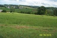 Lot 29 Victory Drive, Madisonville, TN 37354 (#1033168) :: Billy Houston Group