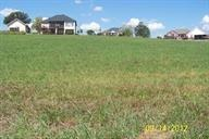 Lot 31 Victory Drive, Madisonville, TN 37354 (#1033181) :: Billy Houston Group