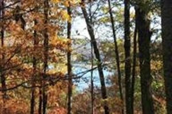 Lot 4 Lakemoore Drive, Jefferson City, TN 37760 (#1034769) :: Billy Houston Group