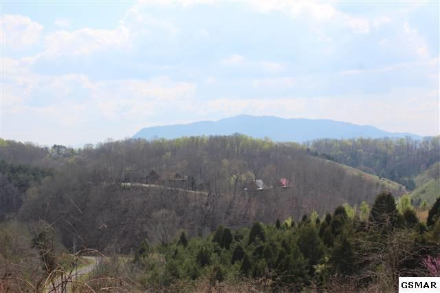 Parcel 002 Indian Gap Rd, Sevierville, TN 37876 (#1035316) :: Billy Houston Group