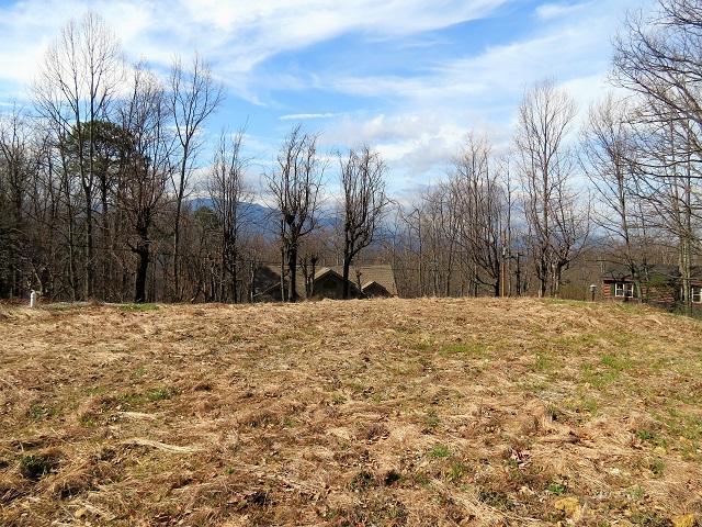 920 Pine Cone Way, Gatlinburg, TN 37738 (#1036260) :: Shannon Foster Boline Group