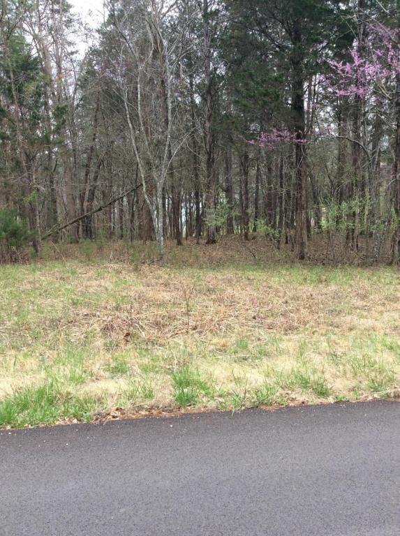Mill Creek Run Lane, Andersonville, TN 37705 (#1036373) :: Billy Houston Group