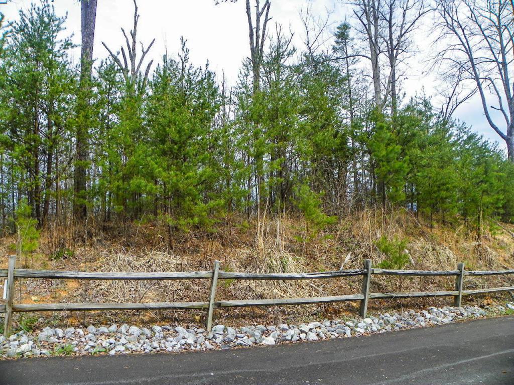 Lot# 6 Shadyview Ridge Road - Photo 1