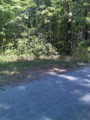Cherrywood Drive, Crab Orchard, TN 37723 (#1036634) :: Billy Houston Group