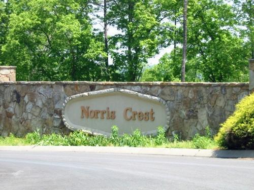 Mountain Crest, LaFollette, TN 37766 (#1036749) :: Billy Houston Group
