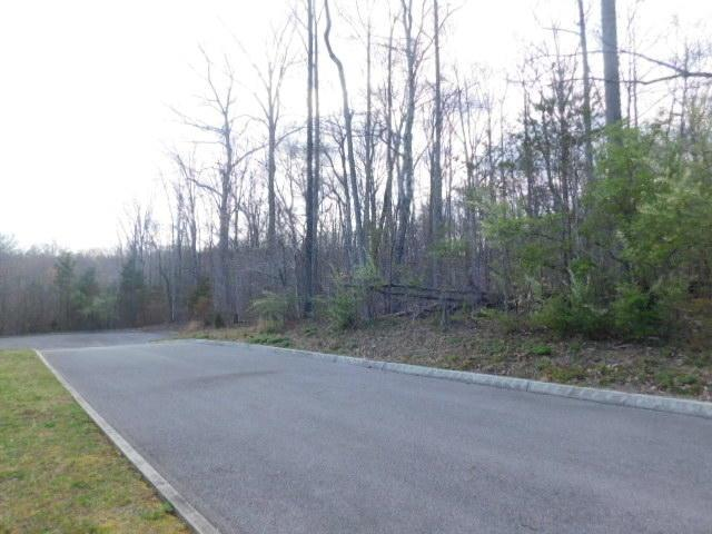 Lot 5 Sassafras Grove Lane, Rocky Top, TN 37769 (#1037422) :: Billy Houston Group