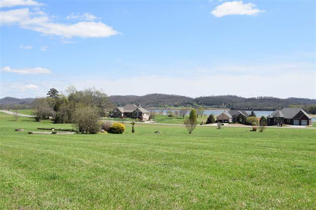 4009 Paradise Drive, Mooresburg, TN 37811 (#1037437) :: Billy Houston Group