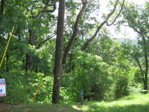 Twin Rock Way, Sevierville, TN 37876 (#1037588) :: Billy Houston Group