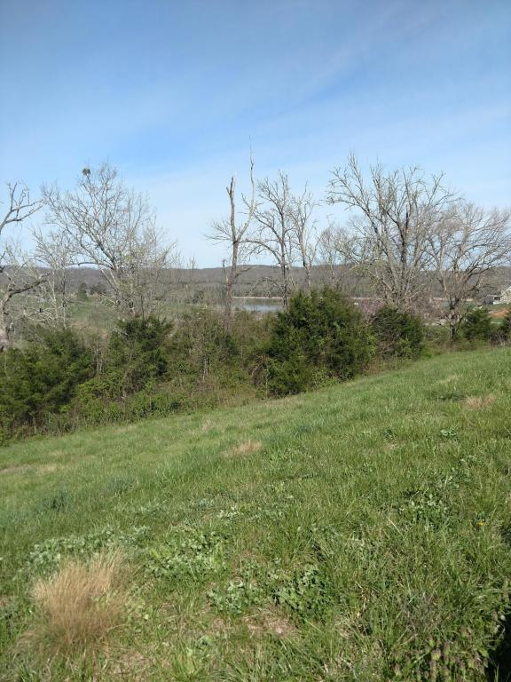 Lot 179 Russell Brothers Rd, Sharps Chapel, TN 37866 (#1037713) :: Billy Houston Group