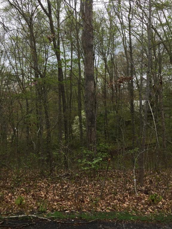 Bootbluff Trail Tr, Dandridge, TN 37725 (#1038354) :: Billy Houston Group