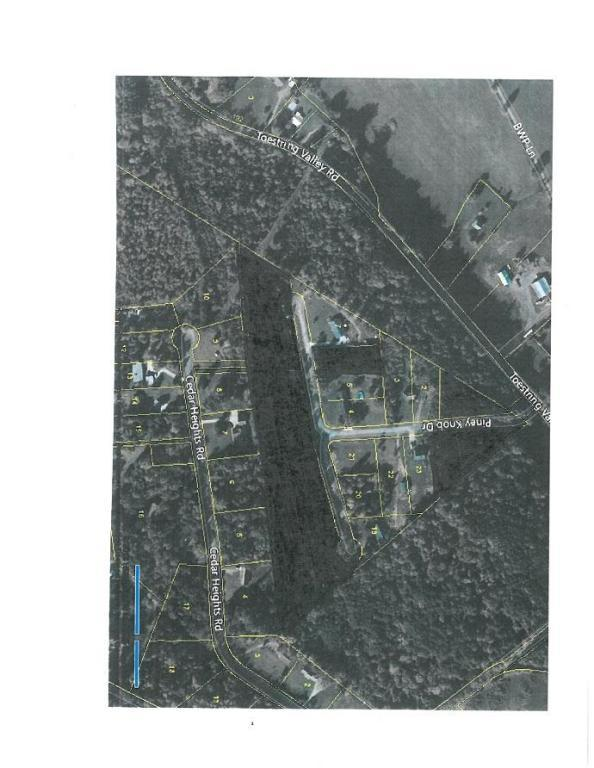 Lot 1 Piney Knob Drive, Spring City, TN 37381 (#1039068) :: Billy Houston Group