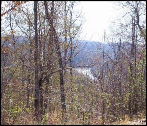 Lot 539 Whistle Valley Rd, Tazewell, TN 37879 (#1039416) :: Billy Houston Group