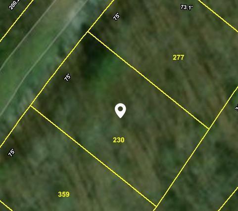 33 Calderwood Circle, Crossville, TN 38558 (#1039838) :: Shannon Foster Boline Group
