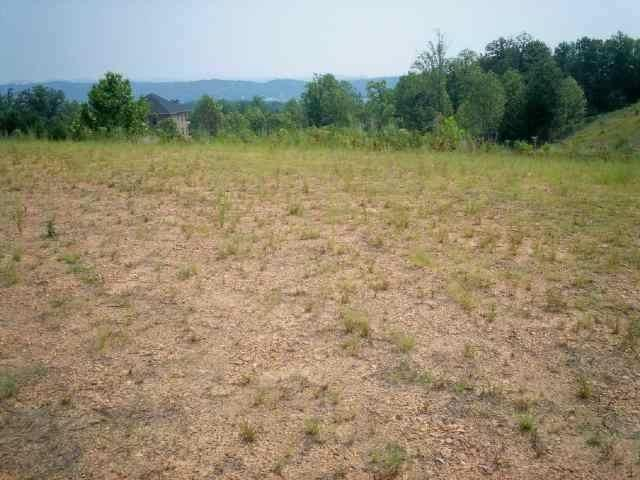 Lot 25 NW Walker Brow Ridge Rd, Cleveland, TN 37312 (#1040489) :: Billy Houston Group