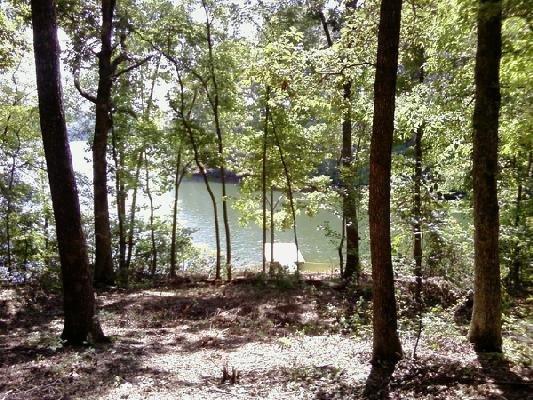 Emerald Pointe Cl Drive, Rockwood, TN 37854 (#1041462) :: Billy Houston Group