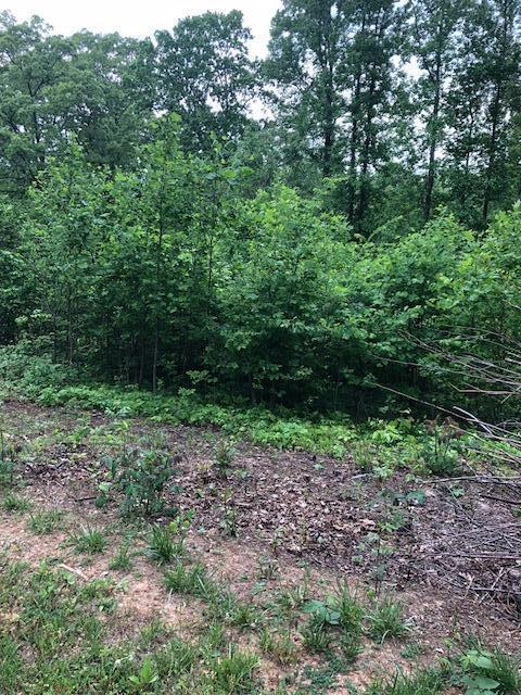 Lot 3 Loudon Circle, Andersonville, TN 37705 (#1041774) :: Billy Houston Group