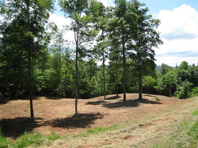 Lot 156 Whistle Valley Rd, New Tazewell, TN 37825 (#1041794) :: Shannon Foster Boline Group