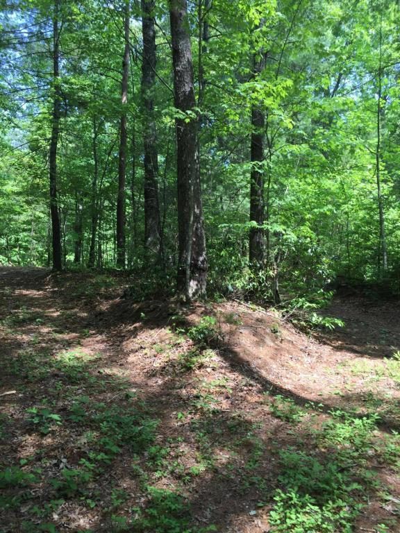 Holder Cemetery Rd., Tellico Plains, TN 37385 (#1041889) :: Shannon Foster Boline Group