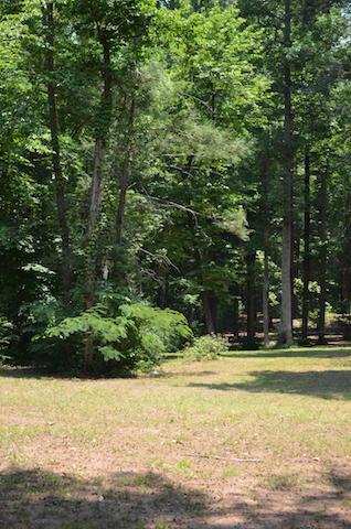 Bethel Church Rd, Townsend, TN 37882 (#1042023) :: SMOKY's Real Estate LLC