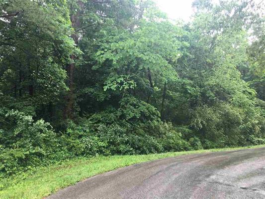 133 Cheeyo Way Way, Loudon, TN 37774 (#1042971) :: Billy Houston Group