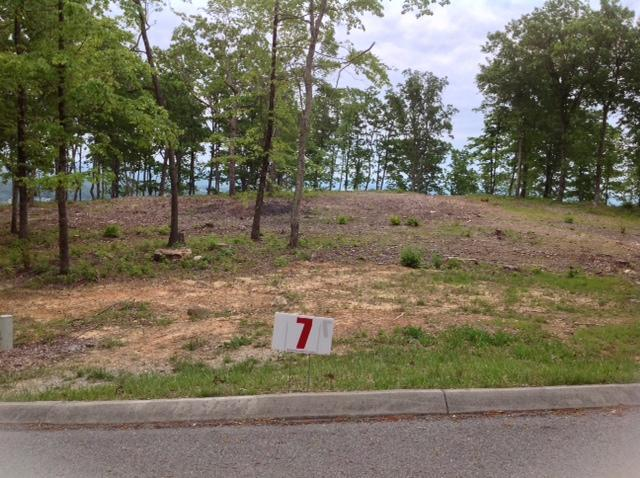1177 Escape Drive Drive, Evensville, TN 37332 (#1043431) :: Billy Houston Group