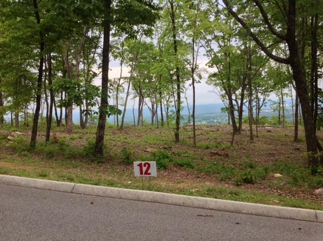 256 Duckwood Lane, Evensville, TN 37332 (#1043450) :: Billy Houston Group