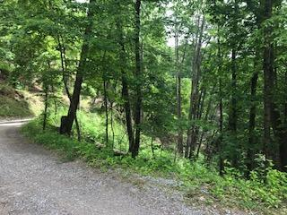 Lot# 28 Sourwood Way, Sevierville, TN 37876 (#1043467) :: Billy Houston Group