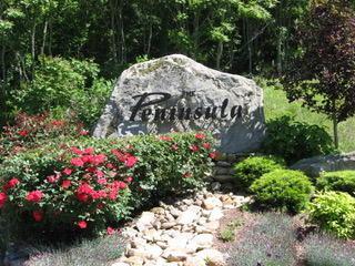 Crowne Pointe Rd, LaFollette, TN 37766 (#1043850) :: Billy Houston Group